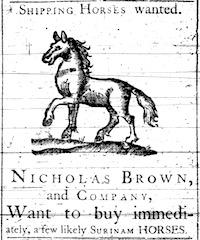 Advertisement to buy horses for export (Providence Gazette, Jan. 1764)