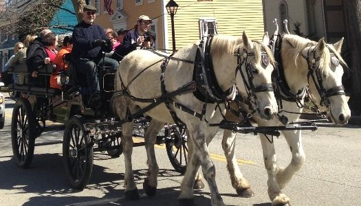 Traveling in the Past – Hitching Horses to History in Wickford Village
